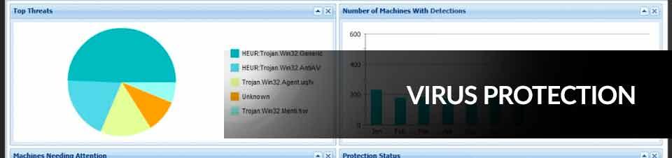 SolveIT Bahamas - Virus Protection